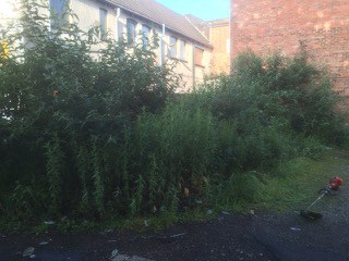 Before garden clearance Kettering